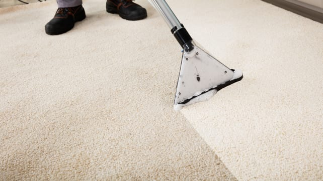 deep clean carpet