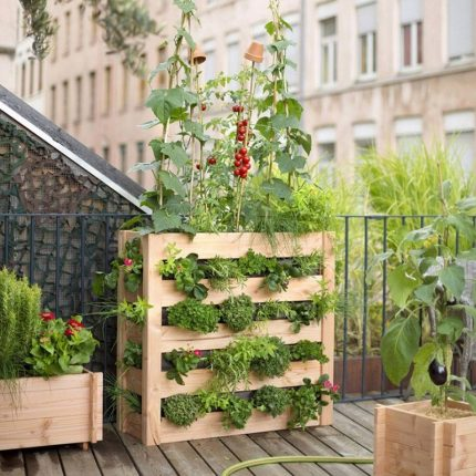 Urban gardening ideas