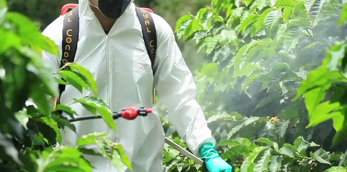 spray pesticides safely